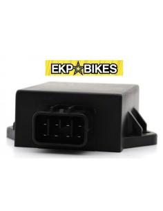 CDI Pit Bike/Minigp ZS 110-140-155cc 4T ekpbikes