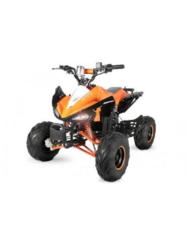 Quad Eco Speedy 1000W 48V R7