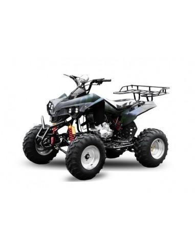 Quad WARRIOR ATV AKP 250cc R10