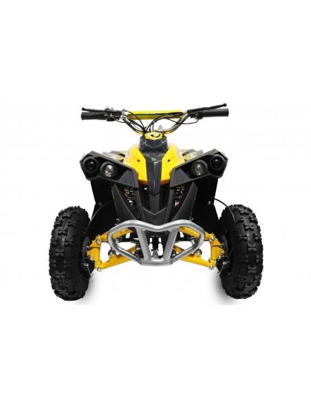 Quad Eco AVENGER PRIME 1200w