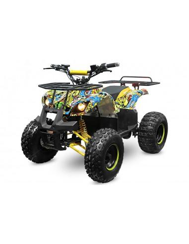 Quad Eco Toronto 1000W 48V R8