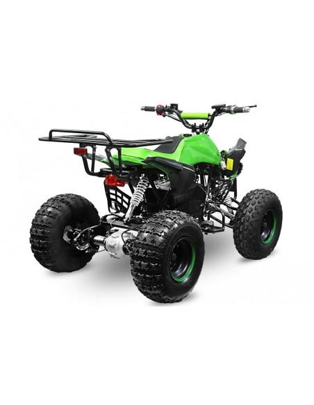 Quad Eco Speedy S8 1000w