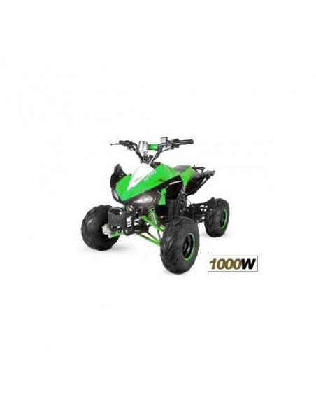 Quad electrico Nitro Eco Speedy 1000W 48V R7