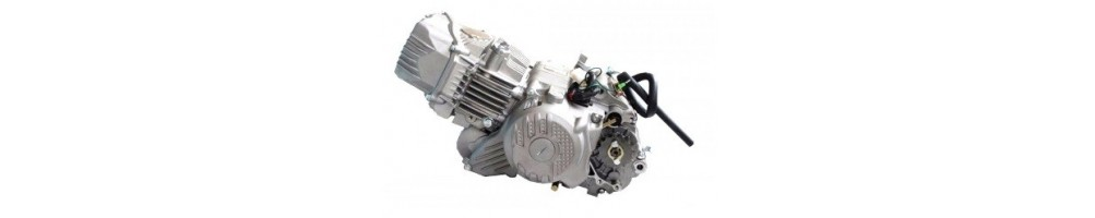 Motor ZS190cc